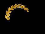 studio victory logo
